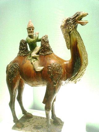 450px-Westerner_on_a_camel
