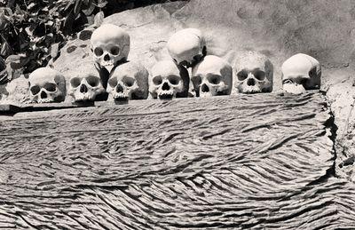 Skullsbw