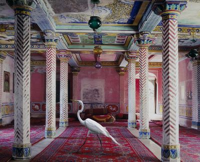 Karen-Knorr-Photos-Yellowtrace-055