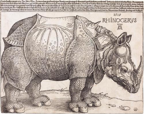1024px-The_Rhinoceros_(NGA_1964.8.697)_enhanced